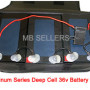 Platinum Series Deep Cell 36v Battery Pack